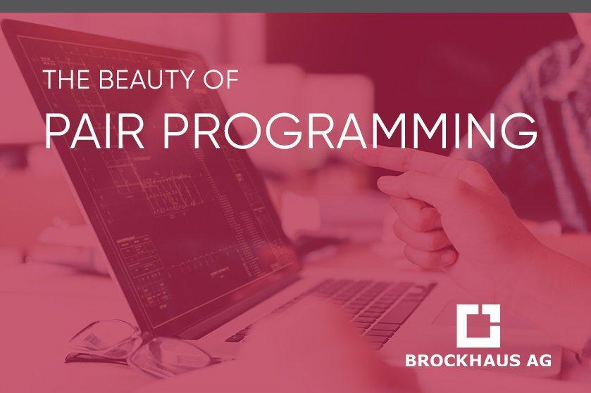 The Beauty of Pair Programming (Webinar | Online)