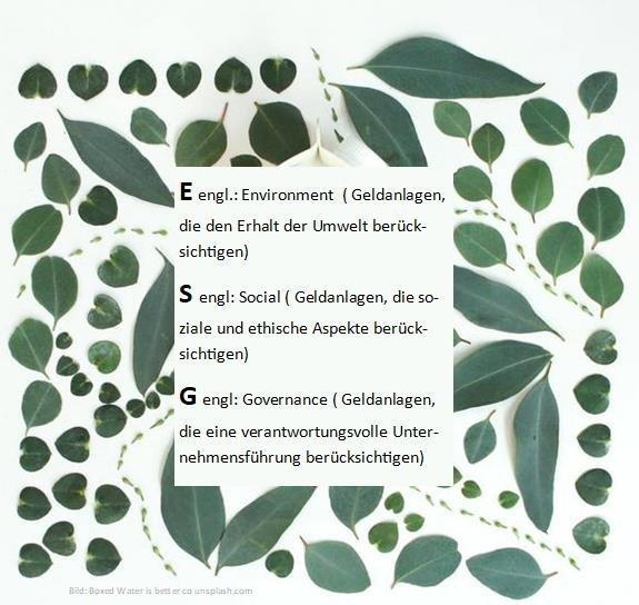 Nachhaltige Geldanlagen – grün, sozial und ethisch korrekt – Nachmittagswebinar (Webinar   Online)